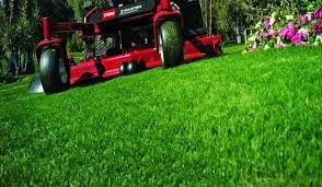 Mowing services in Savannah, GA