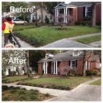 Yard clean up Savannah, GA