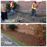 Clean up Savannah, GA