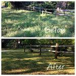 Property clean up Savannah, GA