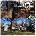 Leaf removal services in Savannah GA