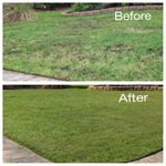 Lawn renovation in Savannah GA