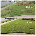 Lawn renovation in Savannah GA